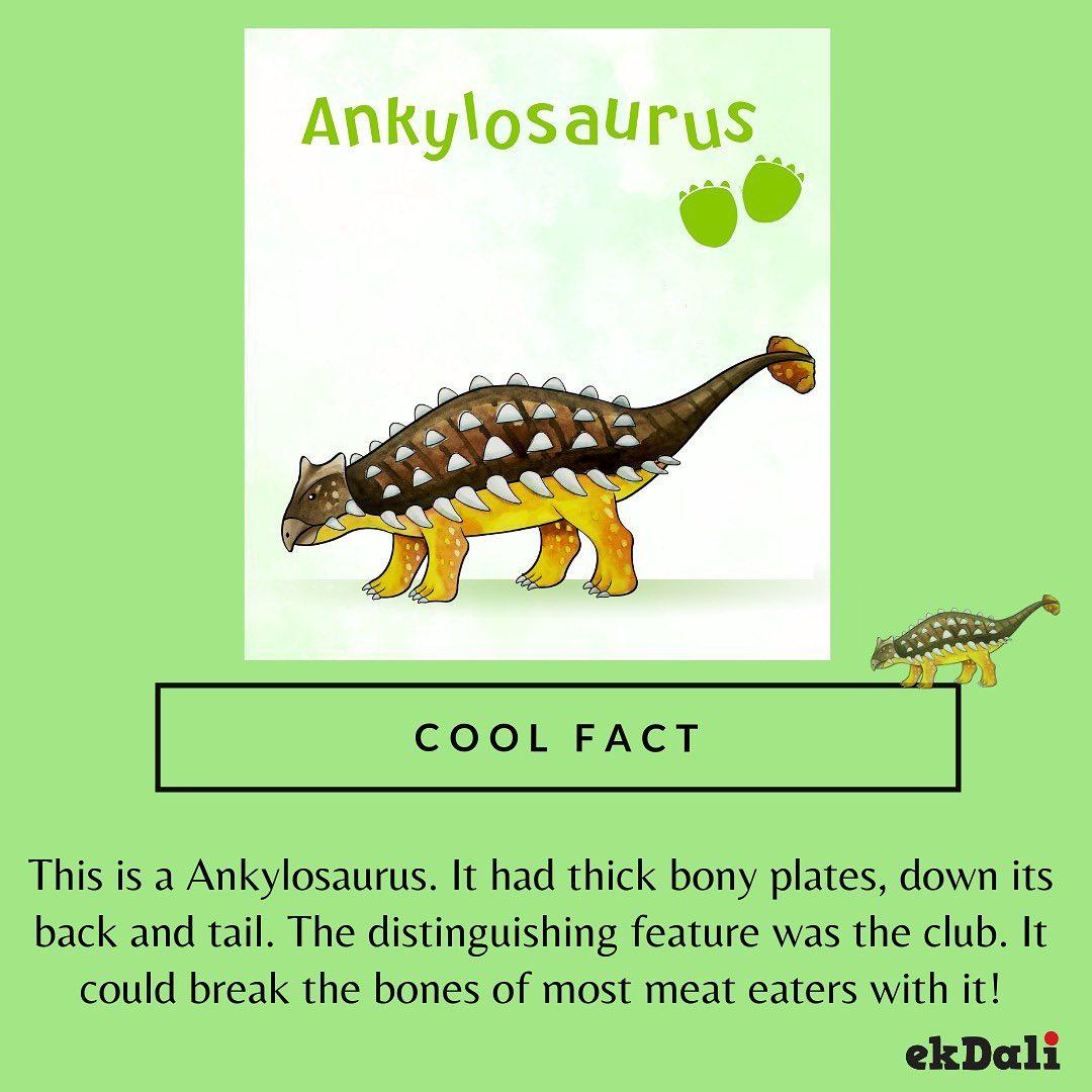 The Ankylosaurus - Heavily armoured herbivorous dinosaurs