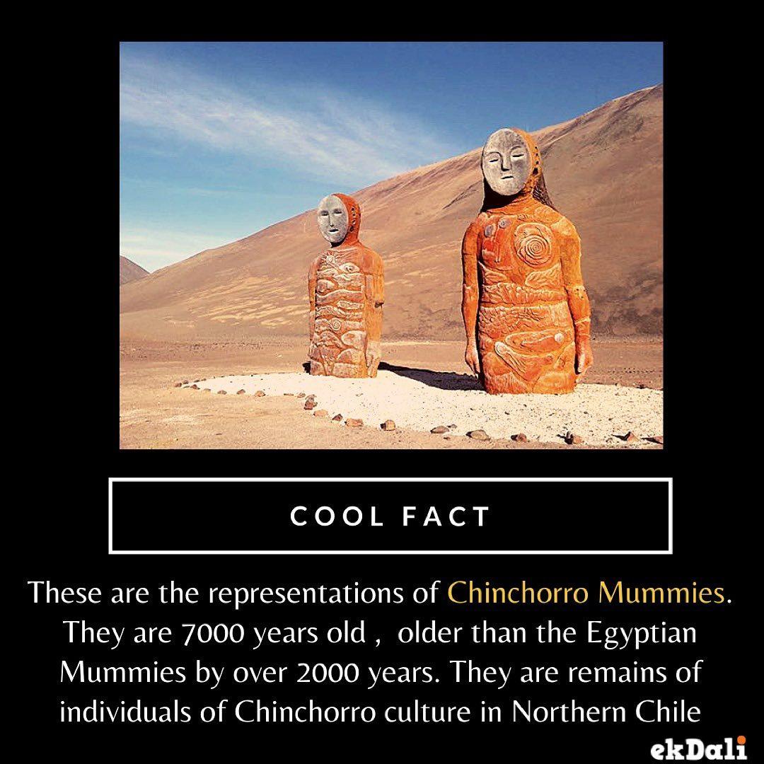 Cool Fact - Chinchorro Mummies