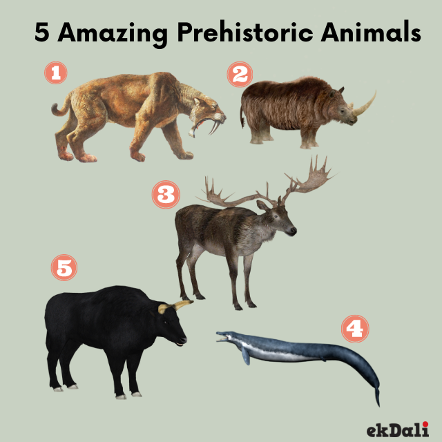 5 less talked about pre historic animals