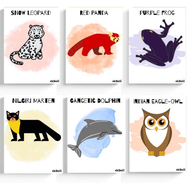 Rare Indian Animals - set of 6